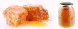 Med a včelí produkty